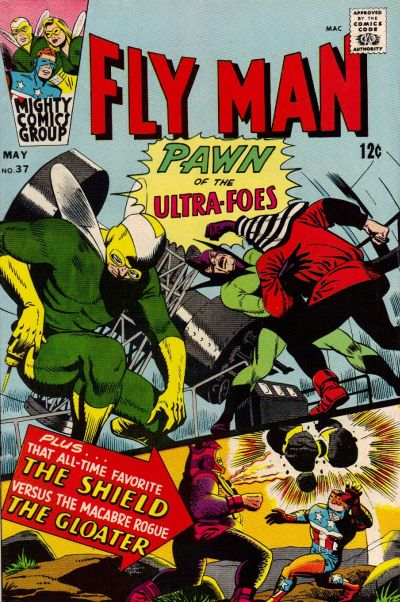 """Fly Man:  Pawn of the Ultra-Foes!"""